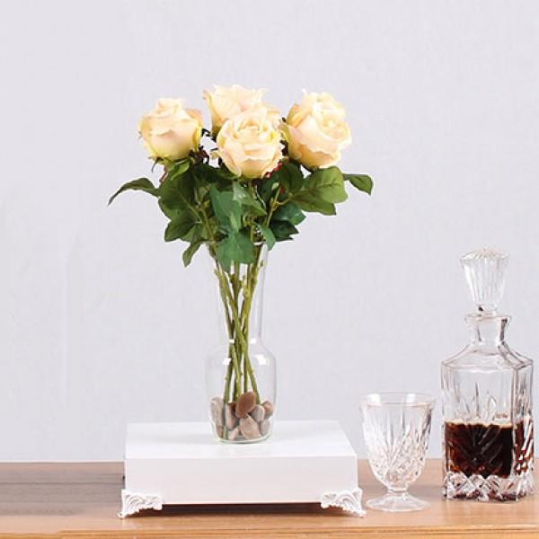 Роза цвят шампанско