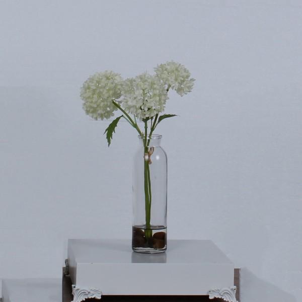 Цвете бяла снежна топка
